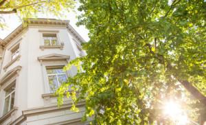 Wohnung immobilie Haus Kaufen